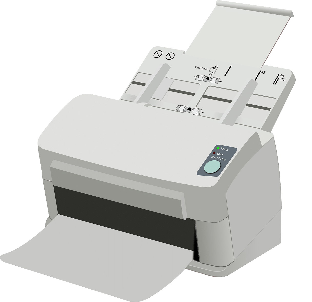 , Digital & Print